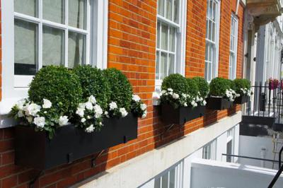 Windowbox and Container Planting