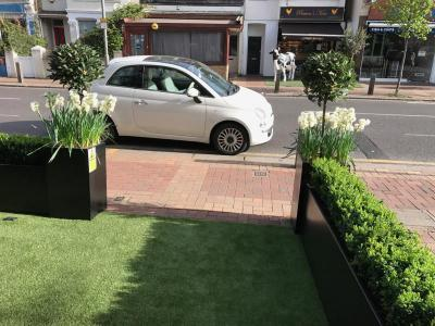 London,Putney-Shop Front Planting