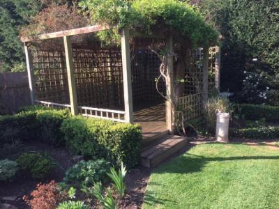 Surrey,Thames Ditton-Spring Garden Maintenance