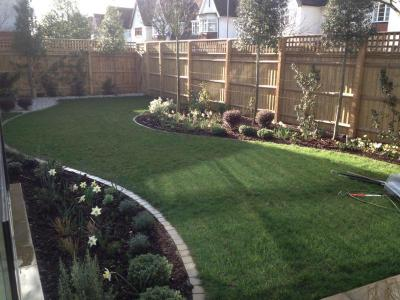 London,Wandsworth-planting and lawn care
