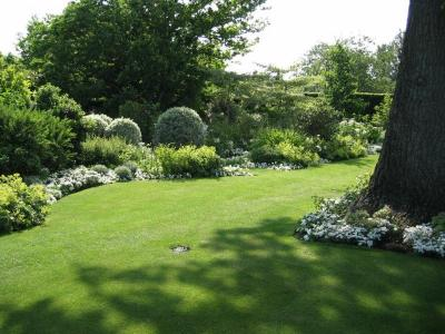 Surrey, Esher-formal garden planting