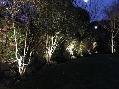 Putney, Back Garden Lighting