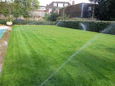 London, St.Johns Wood - back garden